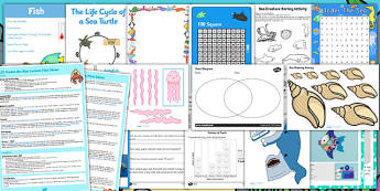 KS1 Under the Sea  - under the sea, oceans, sea creatures, ship wrecks,