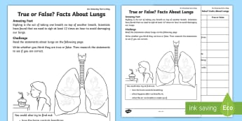 True or False Facts About the Lungs Activity Sheet - Amazing Fact Of The Day, activity sheets, powerpoint, starter, worksheet, morning activity, May, fac