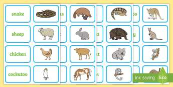 Under Eights Week: The Country Picture and Word Matching Cards-Australia - literacy, phonics, words, vocabulary, english, early years, reading, animals