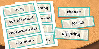 Year 6 Evolution and Inheritance Scientific Vocabulary Cards