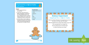 EYFS Gingerbread Man in Different Puddles Science Experiment and Prompt Card Pack - The Gingerbread Man, Traditional Tales, absorption, absorbing, ginger, biscuit