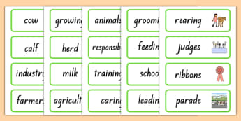 Calf Club Word Cards