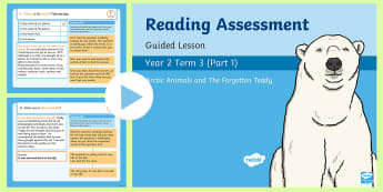 Year 2 Term 3 Paper 1  Reading Assessment Guided Lesson PowerPoint - Year 2, Y2, reading, SATS, SAT, booklet, assessment, assess, KS1, fiction, non-fiction, review, pape
