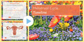 Sex and Relationships Education: Menstruation PowerPoint - SRE Sex and Relationships Education, sex, relationships, puberty, periods, menstruation, cycle, grow