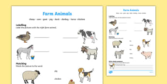 Farm Animals Activity Sheet, worksheet