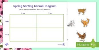 Spring Animals Shape Sorting Activity Sheet - NI KS1 Numeracy, sorting, Carroll diagram, animals, spring, practical activity, cut and stick.