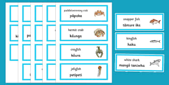 Under the Sea Word Cards Te Reo Māori - sea, seaweek, animals, Māori
