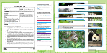 EYFS I Went to the Zoo Adult Input Plan and Resource Pack - Dear Zoo, Rod Campbell, animals, letter to the zoo, cll, c and l, communication and language, listen