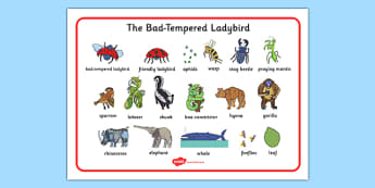Word Mat to Support Teaching on The Bad Tempered Ladybird - keywords, visual aid, story