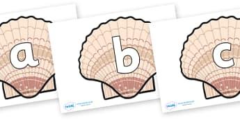 Phoneme Set on Seashells - Phoneme set, phonemes, phoneme, Letters and Sounds, DfES, display, Phase 1, Phase 2, Phase 3, Phase 5, Foundation, Literacy