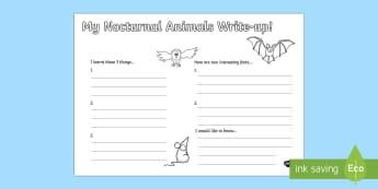 Nocturnal Animals Write Up Worksheet - nocturnal animals, write up, worksheet