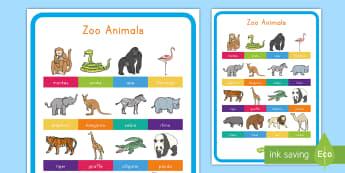 Zoo Animals Display Poster - Early Childhood Animals, Animals, Pre-K Animals, K4 Animals, 4K Animals, Preschool Animals, Zoo Anim