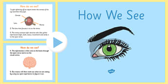 How we See PowerPoint - how we see, how our eyes work, how we see things, how our eyes work powerpoint, sight, vision, biology, the human body, ks2 science