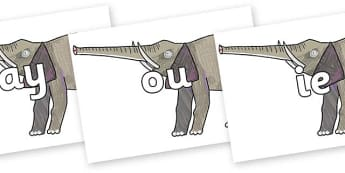 Phase 5 Phonemes on Elephant to Support Teaching on The Bad Tempered Ladybird - Phonemes, phoneme, Phase 5, Phase five, Foundation, Literacy, Letters and Sounds, DfES, display