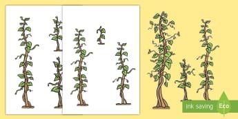Szeregowanie według długości Łodygi fasoli - beanstalk, height, fasola, jack, łodyga, mierzenie, sortowanie, porządkowanie,Polish