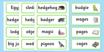 Medial 'j' Word Cards -speech sounds, phonology, articulation, speech therapy, dyspraxia