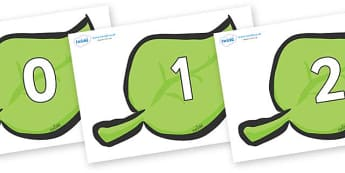 Numbers 0-50 on Spring Leaves - 0-50, foundation stage numeracy, Number recognition, Number flashcards, counting, number frieze, Display numbers, number posters