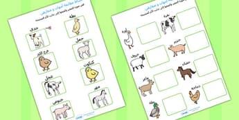 نشاط لمطابقة حيوانات المزرعة وصغارها عربي