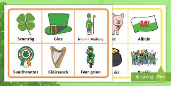 St. Patrick's Day Bingo Gaeilge - ROI, St. Patrick, St. Patrick's Day, Bingo, Words, Irish, Gaeilge,Irish