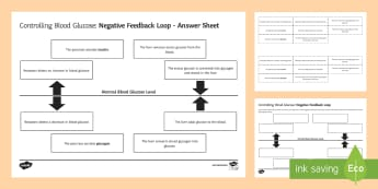 Controlling Blood Glucose Negative Feedback Loop Sequencing Cards - Sequencing Cards, gcse, biology, negative feedback, negative feedback loop, negative feedback system