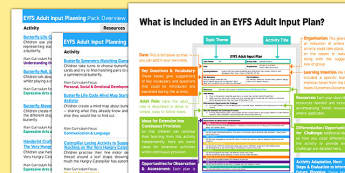 EYFS Butterfly Life Cycle Adult Input Planning And Resource Pack Overview - EYFS planning, Early Years Planning, insects, minibeasts.
