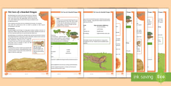 KS2 Pet Care of a Bearded Dragon Differentiated Fact File - KS2 National Pet Month (April 2017), fact file, differentiated fact file, comprehension, non fiction