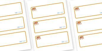 Tiger Themed Editable Drawer-Peg-Name Labels (Blank) - Themed Classroom Label Templates, Resource Labels, Name Labels, Editable Labels, Drawer Labels, Coat Peg Labels, Peg Label, KS1 Labels, Foundation Labels, Foundation Stage Labels, Teaching Labels