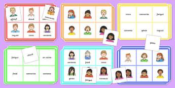 Feelings Bingo French - french, feelings, bingo, activity, game, class, play