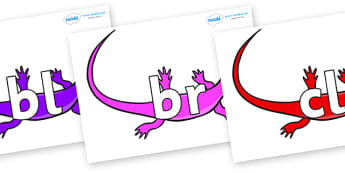 Initial Letter Blends on Skink Lizards - Initial Letters, initial letter, letter blend, letter blends, consonant, consonants, digraph, trigraph, literacy, alphabet, letters, foundation stage literacy