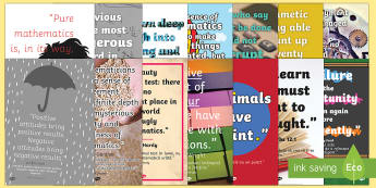 Maths Quotes Motivational Display Poster Pack English/Romanian