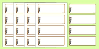 Woodpecker Themed Editable Drawer-Peg-Name Labels (Blank) - Themed Classroom Label Templates, Resource Labels, Name Labels, Editable Labels, Drawer Labels, Coat Peg Labels, Peg Label, KS1 Labels, Foundation Labels, Foundation Stage Labels, Teaching L