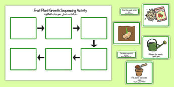 Plant Growth Sequencing Activity Arabic Translation - EAL, translated, bilingual, plants, grow, science, nature