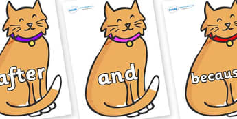Connectives on Pussy Cats - Connectives, VCOP, connective resources, connectives display words, connective displays