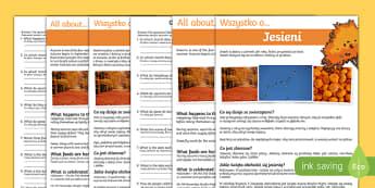 Autumn Comprehension Differentiated Activity Sheets Polish Translation-Polish-translation, worksheet