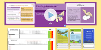 Year 2 Term 3 Paper 2 Reading Assessment Bumper Resource Pack - SATS, booklet, KS1, fiction, non-fiction, review, papers, read, end of year, test,