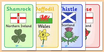 Flowers of Britain and Ireland Display Posters With Flags - flowers of the British Isles, flowers, British Isles, display, poster, sign, nature, isle, flags, with flags, symbol, symbolic, rose, thistle, england, scotland, english rose, shamrock, Irel