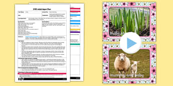 Spring Feely Bag Activity EYFS Adult Input Plan and Resource Pack - EYFS, Early Years planning, adult led, spring, Understanding the World, UtW, seasons