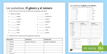 Nouns Gender and Number Activity Sheet - Spanish Grammar, activity sheet, gender, number, exercises, nouns, worksheet.