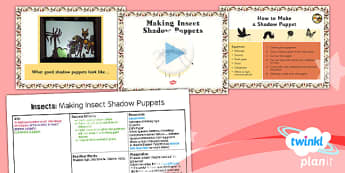 Planit Art LKS2 Lesson 4 Making Insect Shadow Puppets Lesson Pack