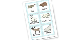 Winter Animals 2 Cards - Winter Literacy Primary Resources - The Seasons Winter Primary Re