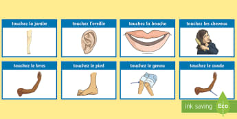 Parts of the Body Simon Says Game French - French Games, french simon says, french body parts, french instructions, french commands.