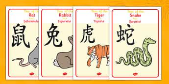 Chinese Year Of The Zodiac Animal Display Posters Romanian Translation - romanian, chinese new year, year, animal, zodiac, display, posters