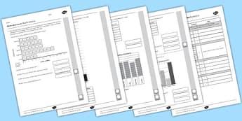 Year 3 Maths Assessment Statistics Term 1- statistic, assessments