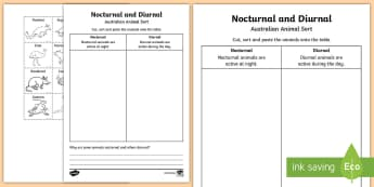 Nocturnal and Diurnal Australian Animals Activity Sheet - adaptation, animal behaviour, ACSSU211, ACSSU211, ACSSU044, classifying, worksheet, Australia