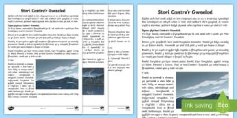 Stori Cantre'r Gwaelod - Welsh Stories,Legends, Branwen, branwen, Brân the Blessed, Bendigeidfran, Brân Fendigaidd,Martholw