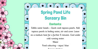 Spring Pond Life Sensory Bin - EYFS frogspawn, tadpoles, frogs, lifecycle