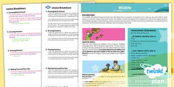 PlanIt - Art UKS2 - Wildlife Birds Planning Overview CfE - wildlife, birds, plan, planit, overview, ks2, history, 2014, planning
