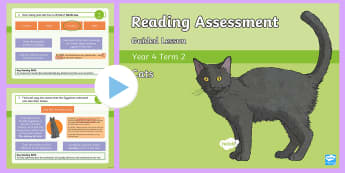 Year 4 Term 2 Non-Fiction Reading Assessment PowerPoint - Year 3, Year 4 & Year 5 Reading Assessment Guided Lesson PowerPoints, KS2, reading, read, assessment
