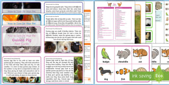 Pets Discovery Sack - EYFS, Early Years, KS1, Science, Understanding the World, exploration, discovery, finding out, exploration, facts, information, puppies, kittens, dogs, cats, guinea pigs, rabbits, chickens, fish, animal welfare, taking care of p