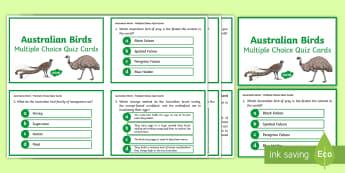 Australian Birds Multiple Choice Quiz Cards - birds, Australian fauna, emu, cassowary, budgie, kookaburra, trivia, game,Australia